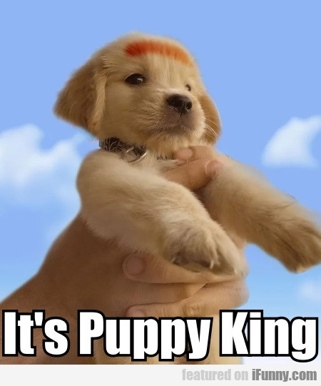 It's Puppy King