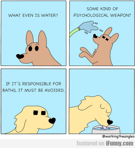 what even is water? some kind of psychological...
