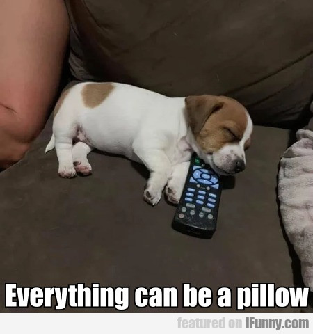 Everything Can Be A Pillow