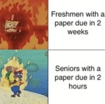 Freshmen With A Paper Due In 2 Weeks - Seniors