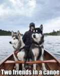Two Friends In A Canoe