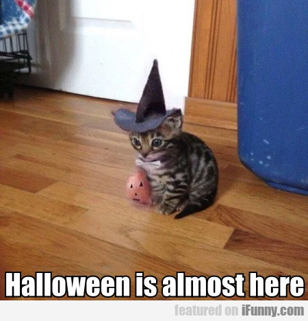 Halloween is almost here