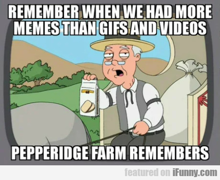 Remember When We Had More Memes Than Gifs