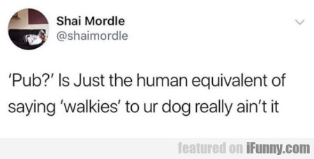 Pub Is Just The Human Equivalent Of Saying Walkies