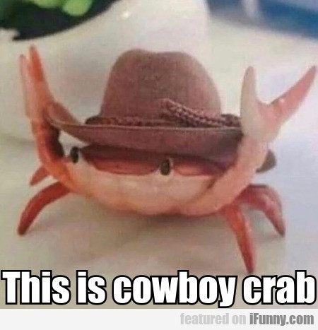 This Is Cowboy Crab