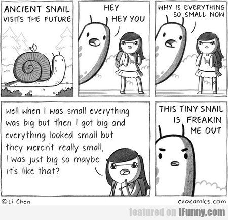 Ancient Snail Visits The Future. Hey! Hey You!