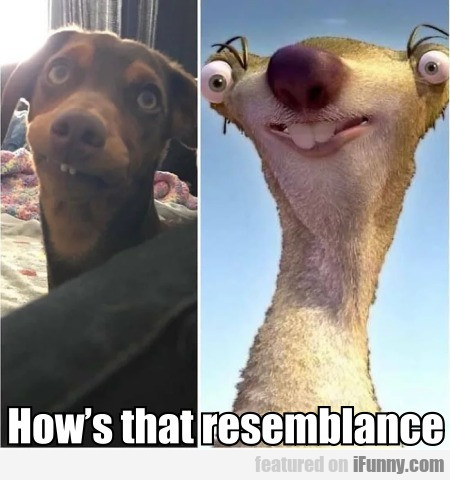 How's That Resemblance