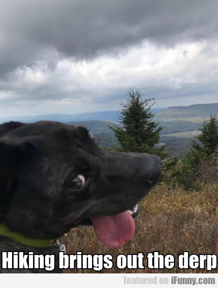 Hiking Brings Out The Derp