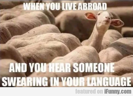 When You Live Abroad And You Hear Someone